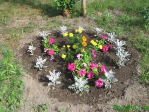 Создаем цветник - клумба круглая