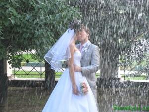 Майские свадьбы