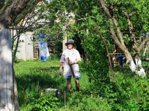 Как бороться с сорняками на участке