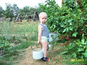 поливаем ягодные кустарники