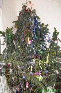 Ритуалы с Новогодней елкой