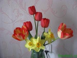 Уход за тюльпанами в букете