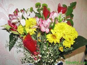 Цветочные приметы для женщин