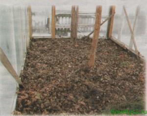 Советы огородников