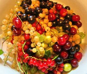 Сохраняем витамины в ягодах